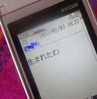 120209_052_copy