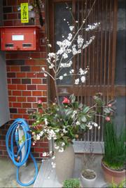 120307takatori_046_copy